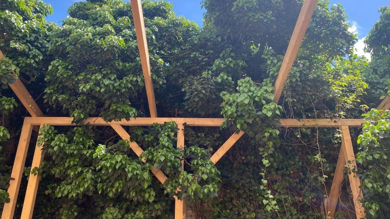 ÆDEN Berlin outdoor canopy